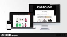 Site web « Zwei Brüder »   Janvier 2018